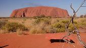 Catalyst Uluru Closer