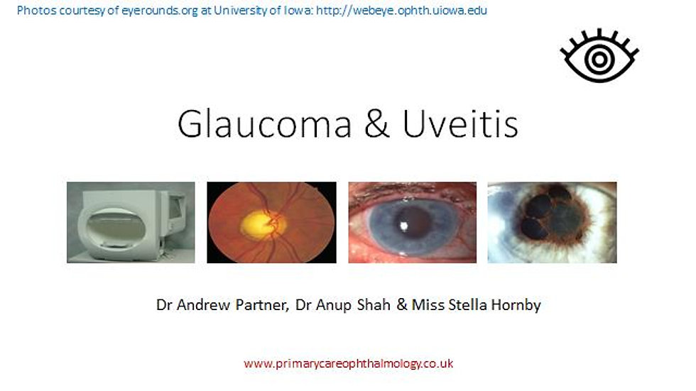 Glaucoma & Uveitis in Primary Care