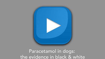 Paracetamol in dogs: the evidence in black & white