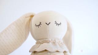 Meet Tokki the Rabbit