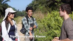 Animal Behaviour Field Course 2014  (Borneo Sabah, Malaysia)