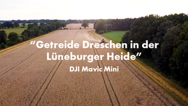 Cutting and threashing cereal - Lüneburger Heide