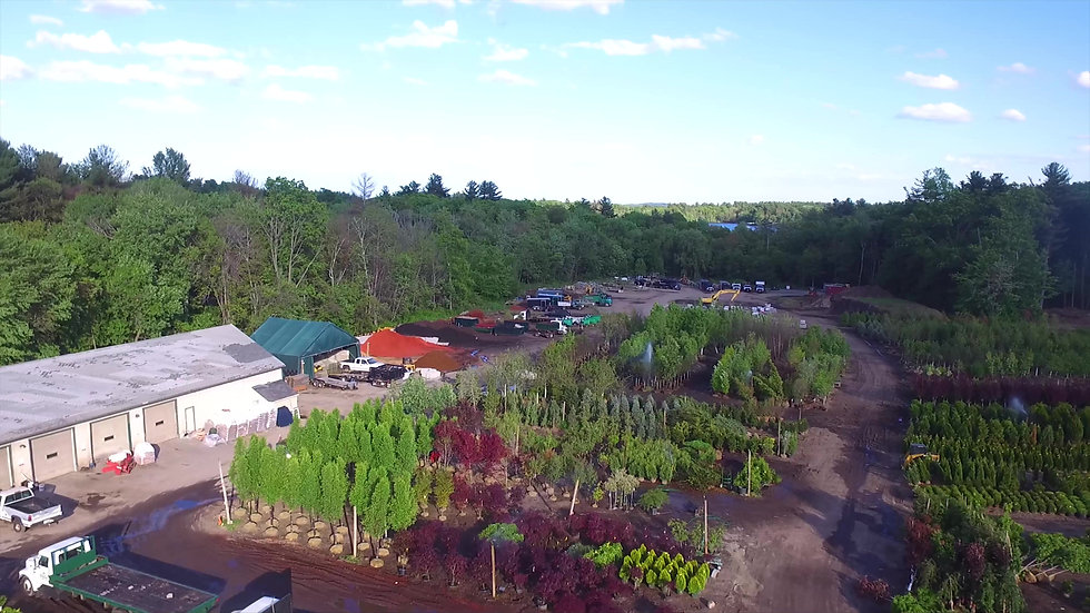 Watch Our Nursery Come To Life!