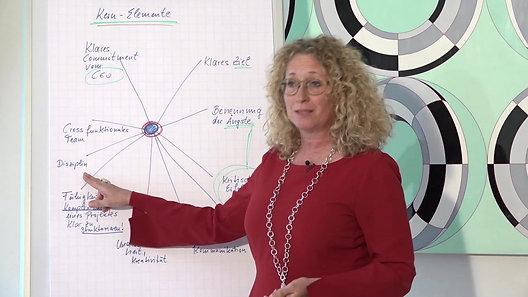 Silke Lerche Global_Kernelemente bei Change Management-Projekten