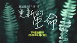 Chinese Sermon - 20200628