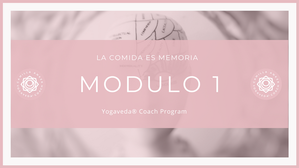 YogaVeda® Coach 2