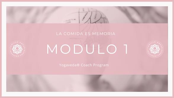 YogaVeda® Coach 6