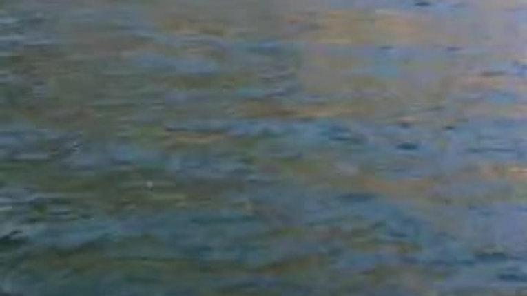 Michael on Lake Como water taxi