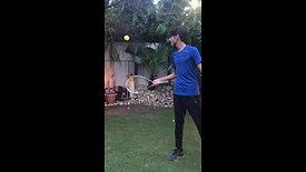 Tennis VIVUM XX