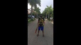 CricketSideTapChallenge