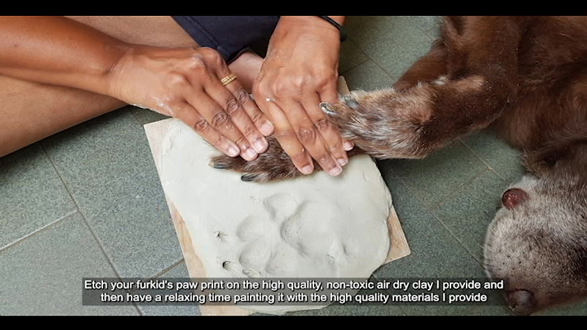 Why create paw prints?