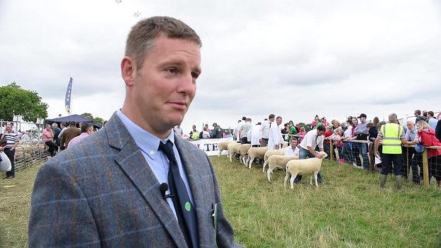 Tullamore 2018 - Welsh Lleyn class