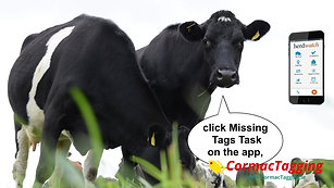 Herdwatch app with Cormac Tagging