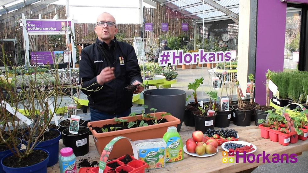 Horkans Garden Show