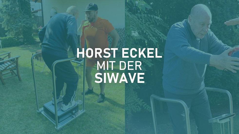 SiWAVE_Horst-Eckel