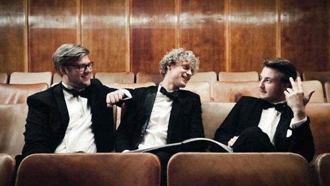Trio Vitruvi