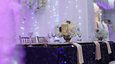 Navy and Champagne Wedding