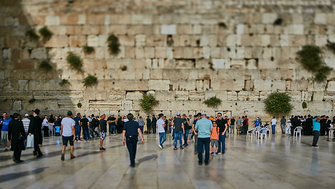 Kotel Dezertofloro Foundation Media
