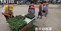 2020菊定植幼保園