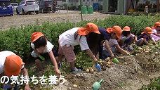 2019 食育 ジャガイモほり0619