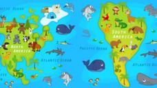 Animals of the Americas