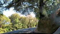 Drive to Pescadero - Part 1 - Aug 15, 2020