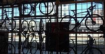 Bike Safety in Boston