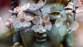 Meditación Guiada Mantra SoHam