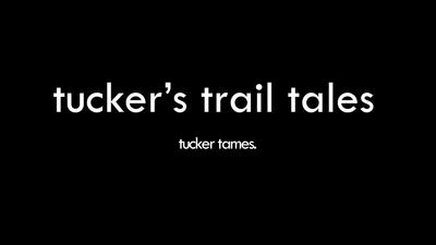 tucker tames