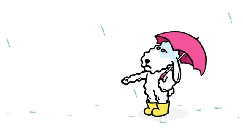 Mia不愛下雨天!
