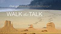 Found Video Walk the Talk (1)