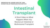 Intestinal Transplant Surgery