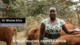 The EPI's Dr Winnie Kiiru on a better future for elephants and people.
