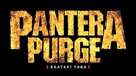 Pantera Purge