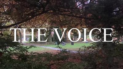 THE VOICE_script