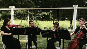 Spring from The Four Seasons - Vivaldi