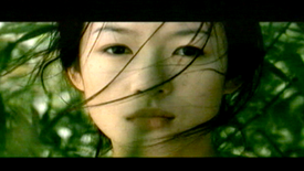 Ang Lee Tribute