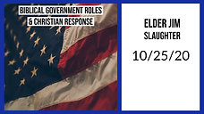 Biblical Government Roles & Christian Response