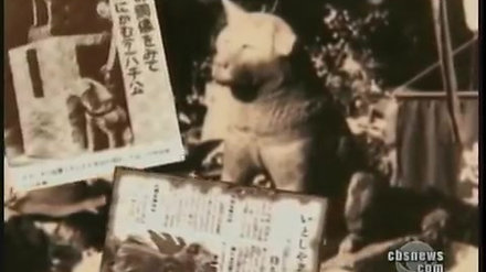 Hachiko A Dog's Story of Loyalty in Tokyo