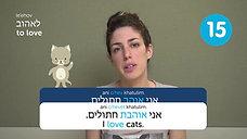 Top 25 Must-Know Hebrew Verbs