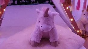 """Unicorn Party """"make your dreams come true"""""""