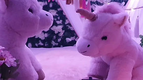 "Unicorn Party ""let your imagination begin"""
