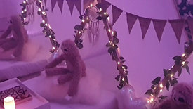 """Sloths Party """"Slow And Steady"""""""