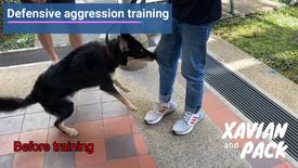 Defensive aggression