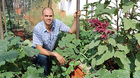 DIY Raised Bed Gardening