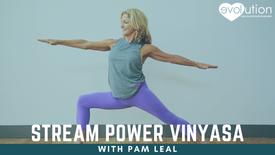 Power Vinyasa with Pam Leal
