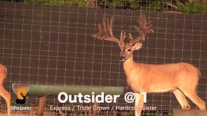Outsider @ 1