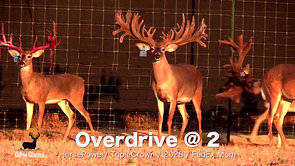 Overdrive at 2