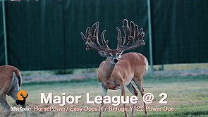 Major League at 2