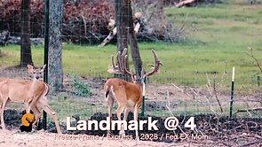 Landmark @ 4